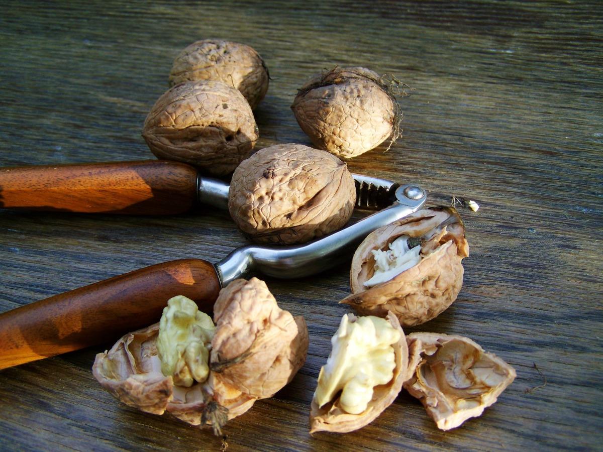 walnut-963665_1920